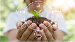Grupo Reckitt anuncia investimento de R$ 8 bilhões em metas globais de sustentabilidade até 2030